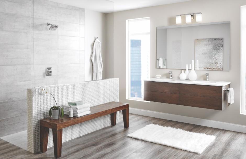 Moen Bathroom Glass Shower and Vanity